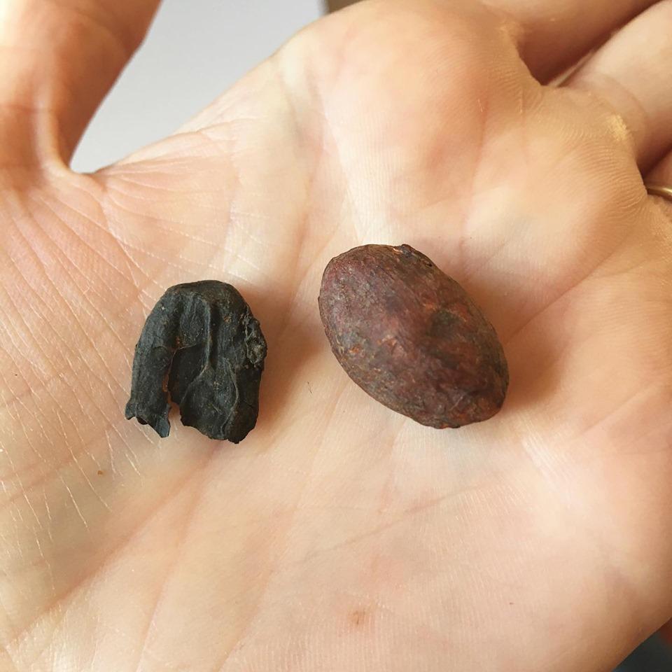 Overroasted Cacao